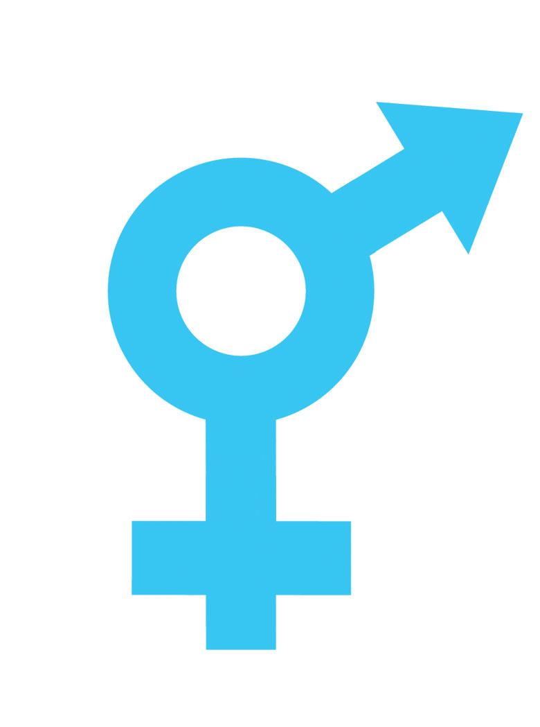 gender_dikey