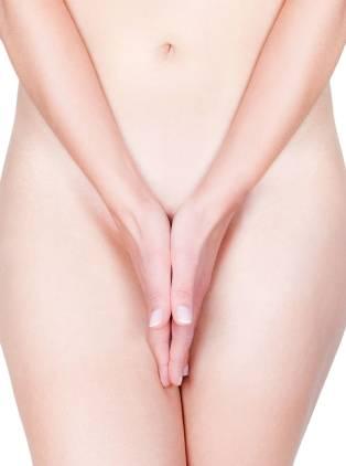 genital-main